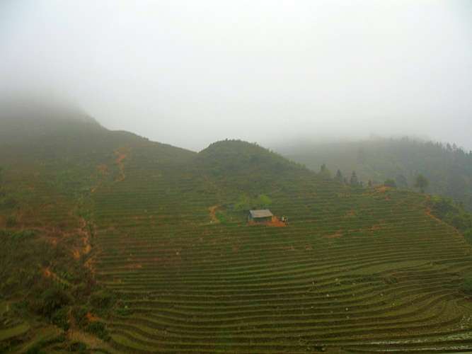 Terraced fields in Sapa country side