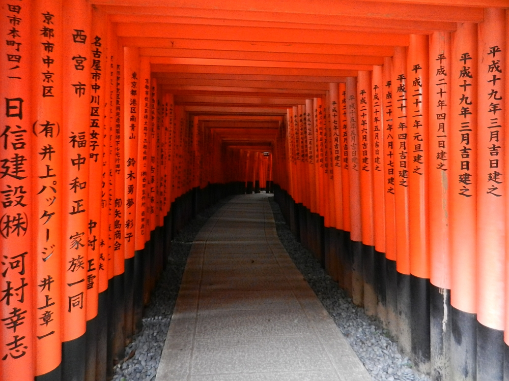 A tunnel of vermillion torii gates.