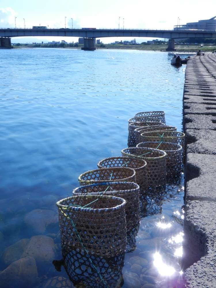 Fish baskets along the river bank