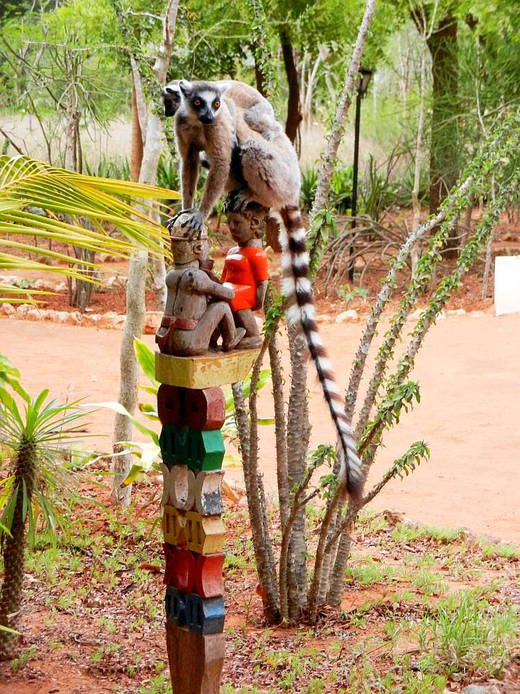 Ring-tailed lemurs on a tribal funerary totem post.
