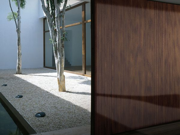 Light transmitting wood composite screen that allows light to show through solid wood