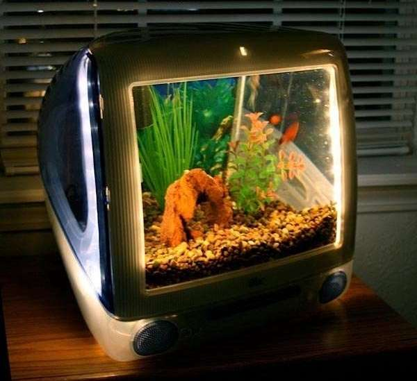 Upcycled iMac G3 aquarium
