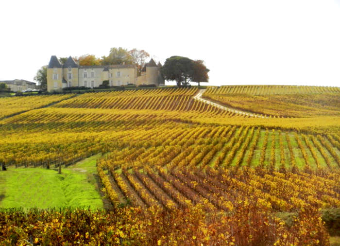 Parting view of the countryside as we leave Sauternes.