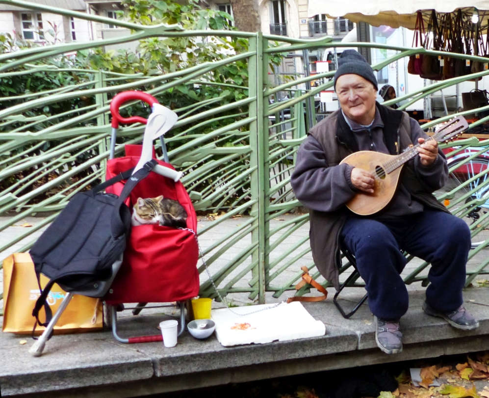 Street musician with his cat at the Market.