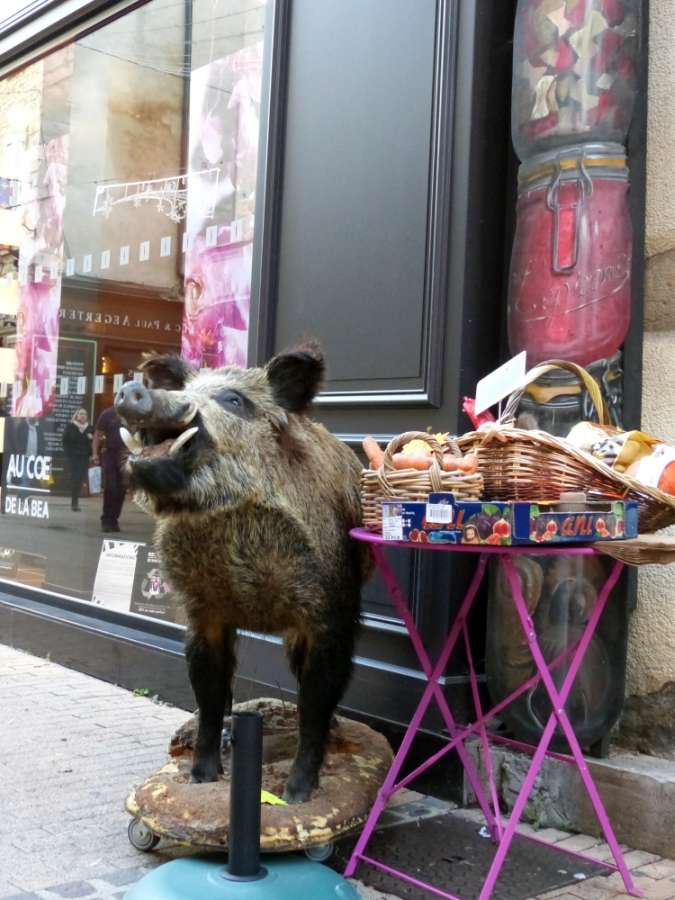 Stuffed boar outside a food shop