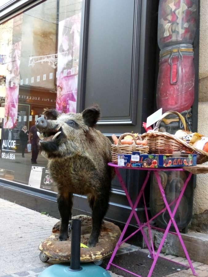 Stuffed boar outside a food shop