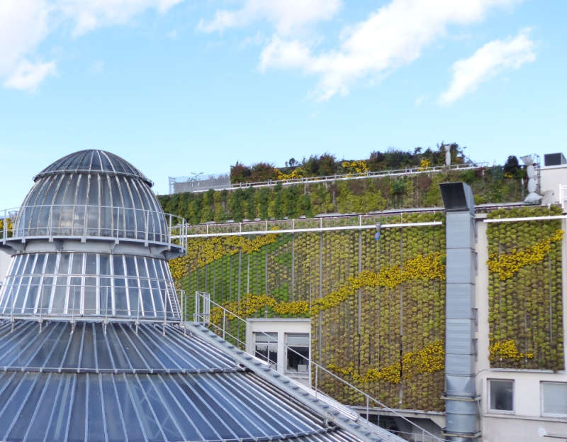 Rooftop farm at Galeries Lafayette Haussmann