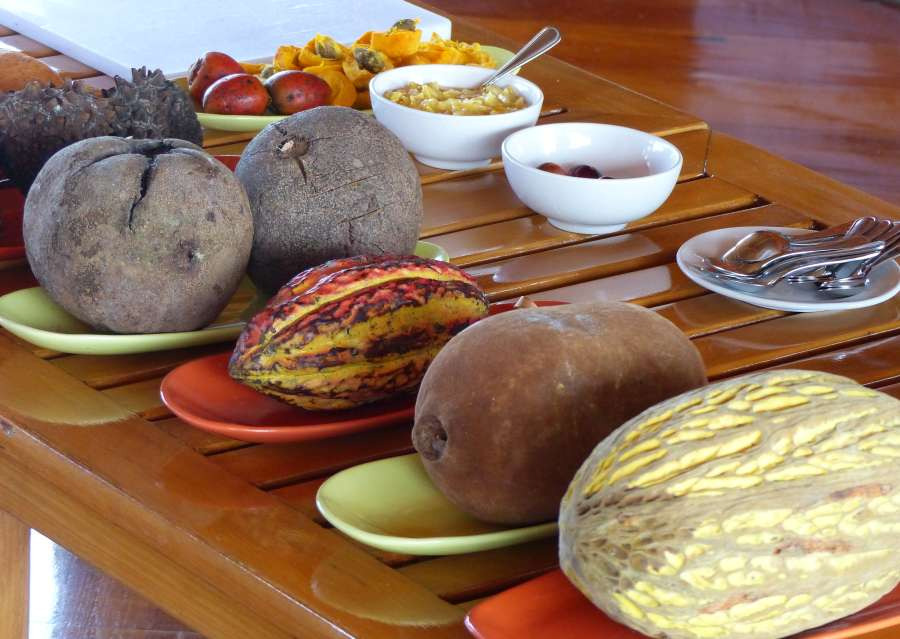 A table of Amazonian fruits