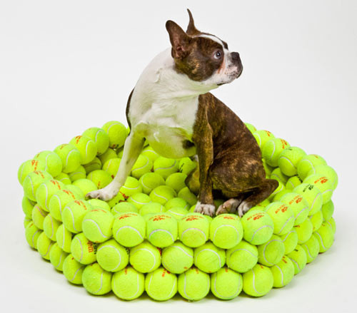 Dog bed from repurposed tennis balls