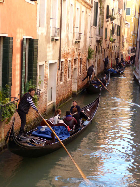 A procession of gondoliers in Venice canal.