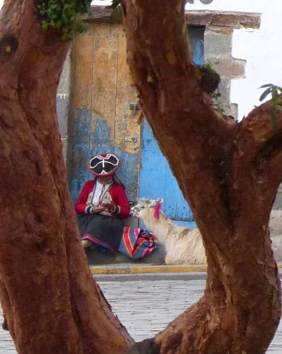 Indigenous woman with llama.
