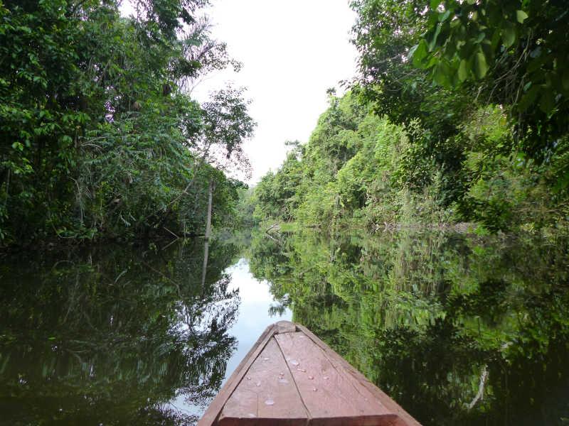 Navigating the Amazon's waterways