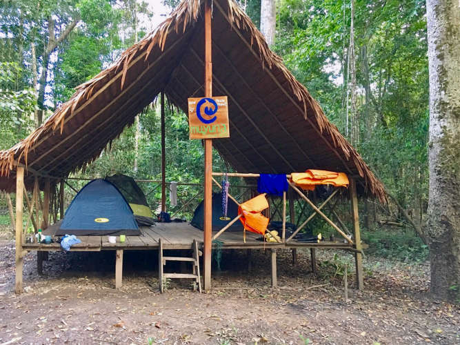 Jungle Camp of Muyuna Lodge