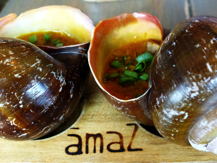 Wild giant Amazonian snails stewed with turmeric chorizo and spicy chili peppers